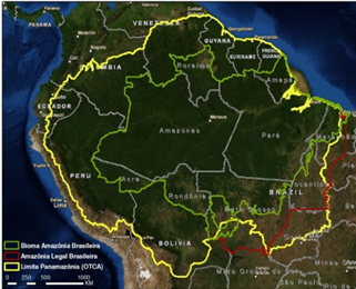 landforms south america with Deforestation Logging And Mining A Deadly  Bination For The Amazon Rainforest on Brunei Maps further Wilson Island besides Grand Canyon Day Trips 1678102 likewise Schleswig Holstein Physical Map as well What Is An Alluvial Plain.