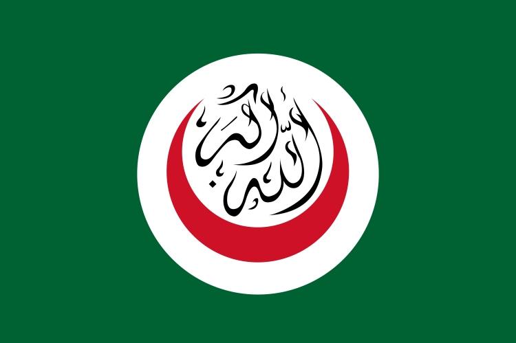 Flag_of_OIC-01